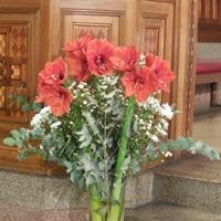 Fleurs, ménage, décoration